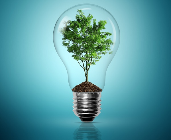 Clean tech environment plant in lightbulb big picture