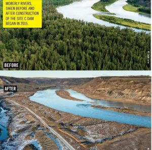 Site C before and After