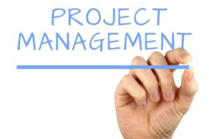 Delivering Complex Projects